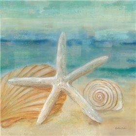 Horizon Shells I
