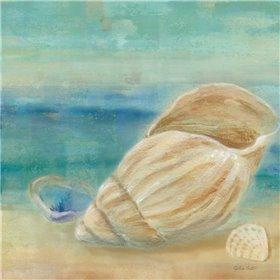 Horizon Shells II