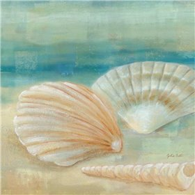 Horizon Shells IV