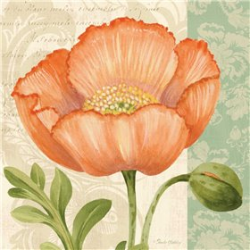 Pastel Poppies II