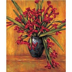 Red Irises