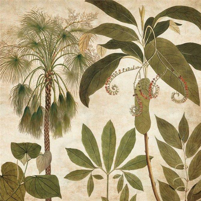 Palm Persuasion II
