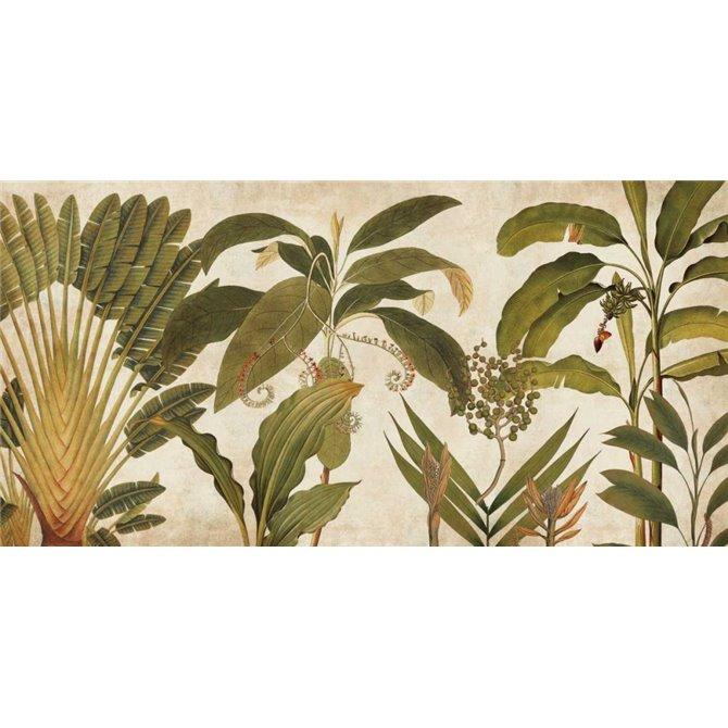 Palm Medley
