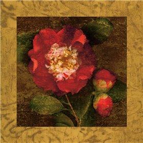 Red Camellias I