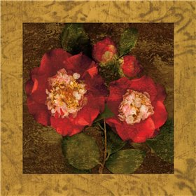 Red Camellias II