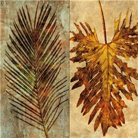 Palms Pairs II