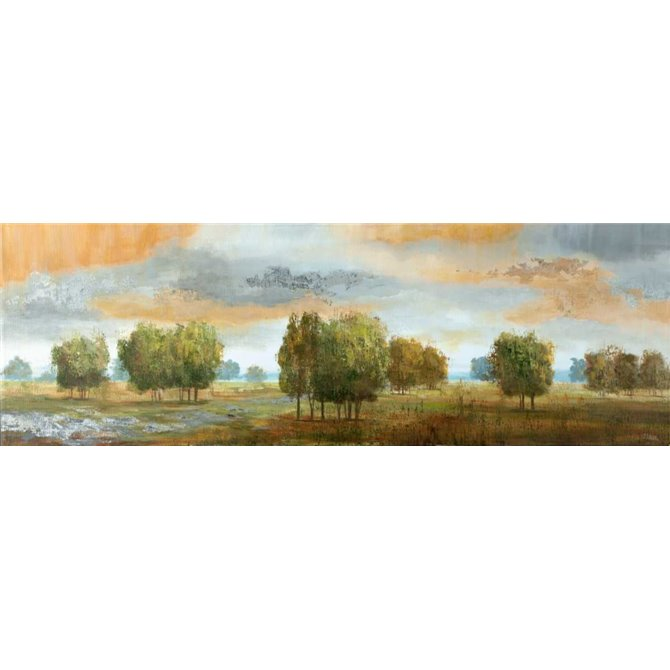 Meadow Vista II