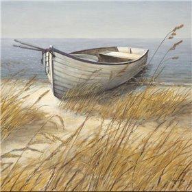Shoreline Boat