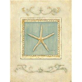 Classic Starfish