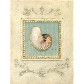 Classic Seashell Detail