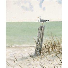 Seaside Perch