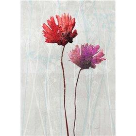 Blush Blooms 1