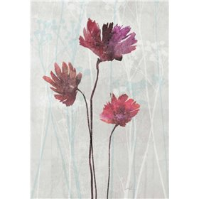 Blush Blooms 2