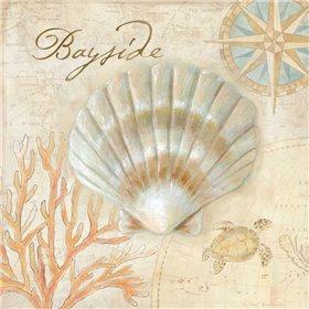 Nautical Shells II