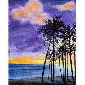 Tropic Nights II