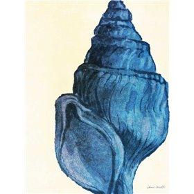 Blue Shell IV