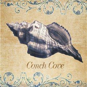 Conch Cove