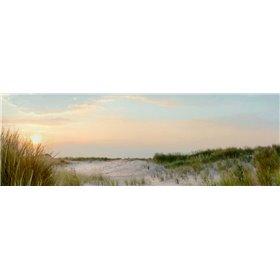 Island Sand Dunes Sunrise No. 1