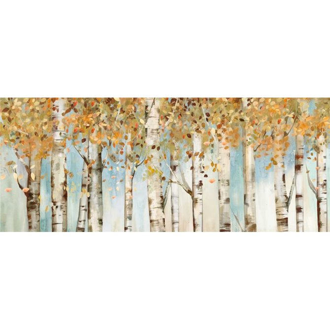 Birch Country