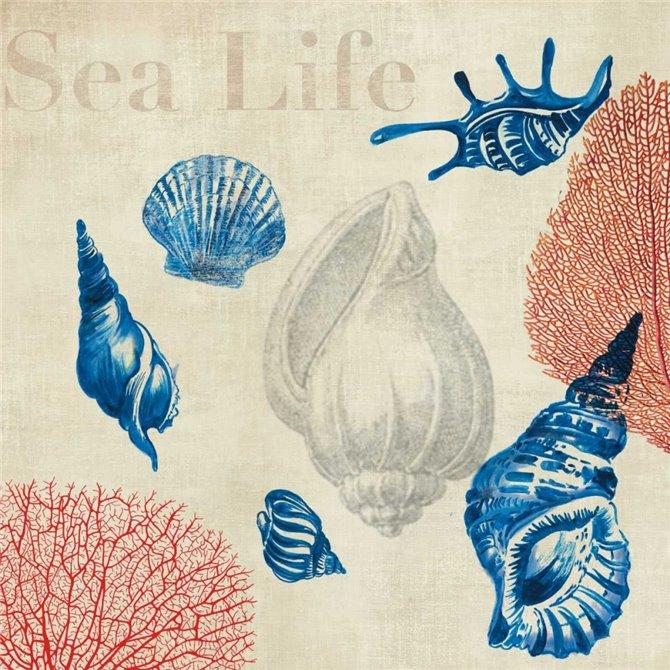 Sea Life Study