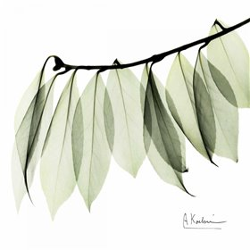 Camelia Leaf In White