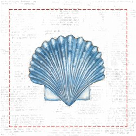 Navy Scallop Shell on Newsprint with Red