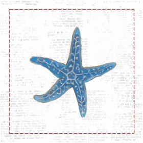 Navy Starfish on Newsprint with Red
