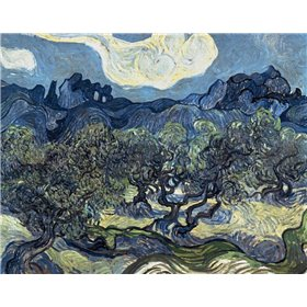 Olive Trees With The Alpilles In The Background,Saint-Remy