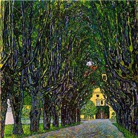 Avenue In Schloss Kammer Park 1913