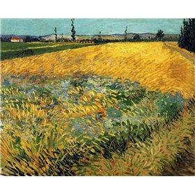 Wheatfield 1888