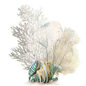 Coral II