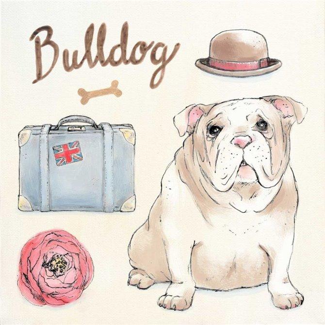 Bulldog Escapades