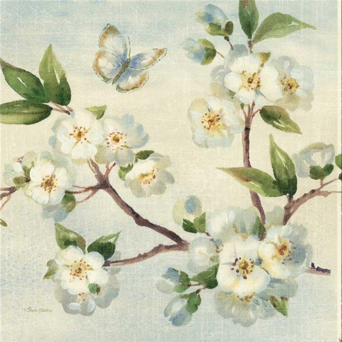 Cherry Bloom I