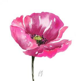 Poppies Tempo I
