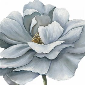 Blue Silken Bloom Withaar