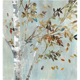 Birch with Leaves I