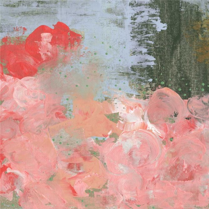 Pink Roses III
