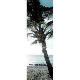 Cool Bimini Palm I