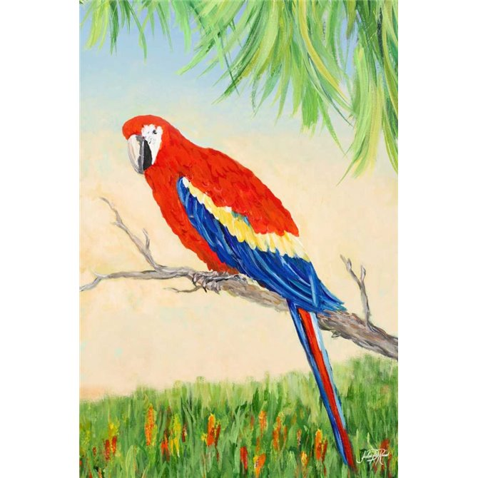 Tropic Bird in Paradise I