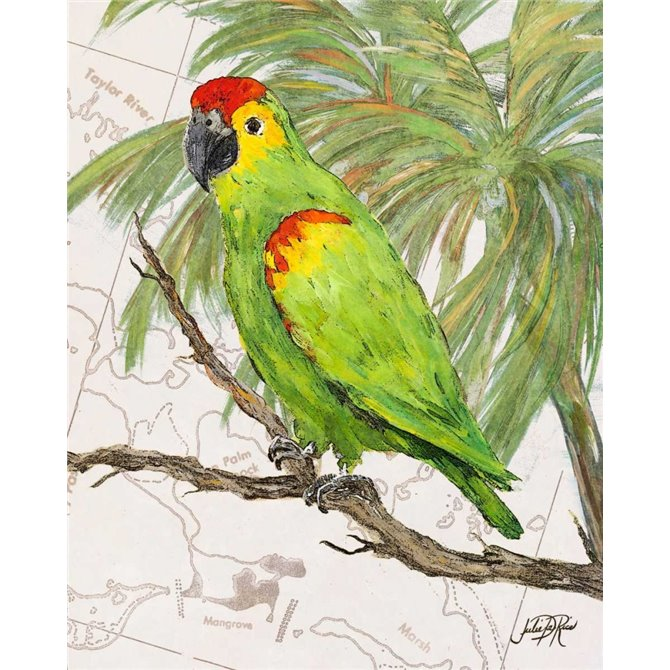 Another Bird in Paradise II
