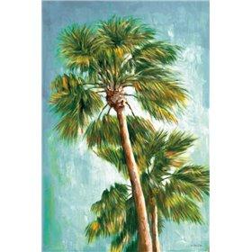 The Coconut Tree II