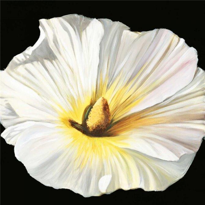 White Bloom II