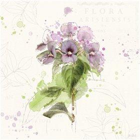 Floral Splash III