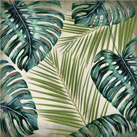 In the Tropics 2