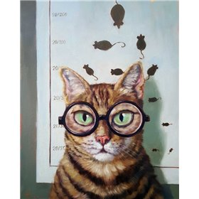 Feline Cat Exam