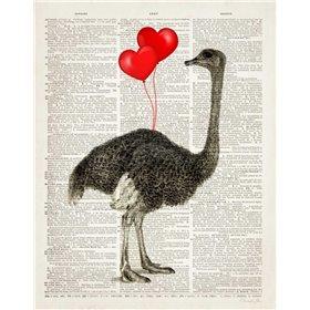 Ostrich In Love