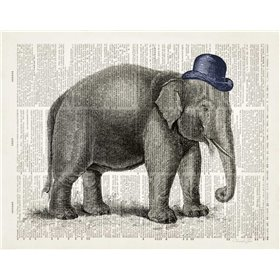 Elephant In A Bowler