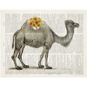 Flower Back Camel