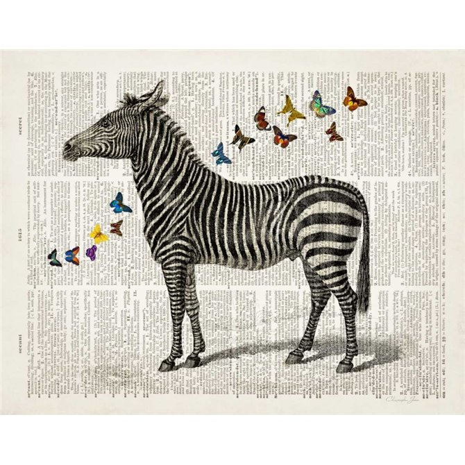 Zebra and Butterflies