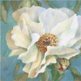 Sen~orita Peony in Bloom II